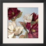 Magnolia Print by Paul Mathenia