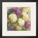 Hydrangea Delight II Print by Carol Rowan
