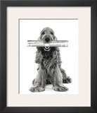 Dog News Prints by Jean-Michel Labat