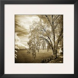 Hopewell Shores Sepia Sq II Print by Alan Hausenflock