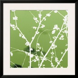 Autumn Branch (green) Framed Giclee Print by Jenny Kraft