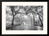 Poet's Walk, Central Park, New York City Prints by Henri Silberman