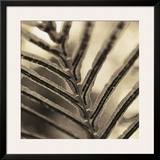 Abstraction Framed Giclee Print by  Canales
