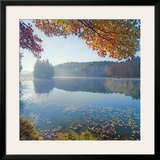 Bass Lake In Autumn I Posters by Marty Hulsebos