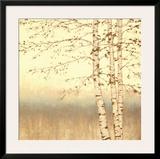 Birch Silhouette II Poster by James Wiens