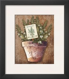 Potted Herbs II Print by Kate Ward Thacker