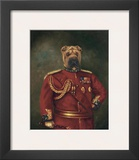 Major General Woof Prints by  Massy