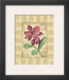 Belle Fleur IV Prints by Betty Whiteaker