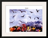 A Dozen Seagull, c.1997 Prints by Peter Hutchinson