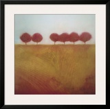 Tuscany Grove Framed Giclee Print by David E. Gordon