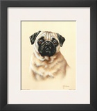Pug Prints by Judy Gibson