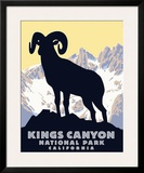 Kings Canyon Framed Giclee Print by Steve Forney