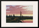 Northern Sunset Prints by Michael Coleman