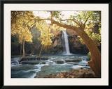 Havasu Falls Posters by W. E. Garrett