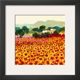 Sunflower Sunset, Tuscany Posters by Hazel Barker