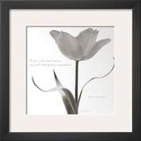 Tulip Beauty Art by Deborah Schenck