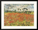 Field of Poppies, Auvers-Sur-Oise, c.1890 Prints by Vincent van Gogh