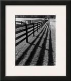 Fences and Shadows, Florida Posters by Monte Nagler