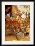 Geraniums Prints by Childe Hassam