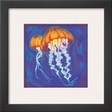 Jelly Fish Posters by Scott Westmoreland