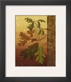 Oak Leaves Print by Jillian Jeffrey