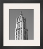 Woolworth Building, New York Prints by Phil Maier