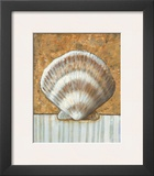Vintage Shell III Prints by K. Bates