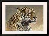 Jaguar Framed Giclee Print by Kalon Baughan