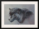 Shadow Hunter Framed Giclee Print by Kalon Baughan