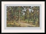 Pine Forest Poster by Iwan Iwanowitsch Schischkin
