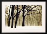Past Dreams Framed Giclee Print by David Winston