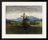 The Lonely Tree Posters by Caspar David Friedrich