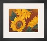 Sunflowers II Posters by Vivien Rhyan