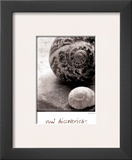 New Discoveries Prints by Sue Schlabach