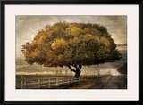 Autumnal Landscape Framed Giclee Print by David Winston