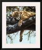 Lake Manyara Lioness Posters by Guy Coheleach