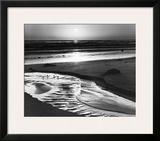 Birds on a Beach Prints by Ansel Adams