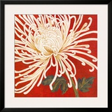 Spider Mum II Posters by Judy Shelby