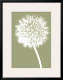 Dandelion (khaki) Framed Giclee Print by Jenny Kraft