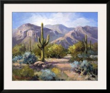 Catalina Mountain Foothills Prints by Maxine Johnston