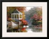 Swans in Parkscape Prints by T. C. Chiu