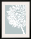 Dandelion Crop (blue) Framed Giclee Print by Jenny Kraft