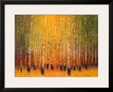 Aspen Glow Art by Gary Max Collins
