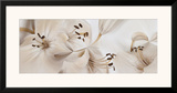 Lilies No. 54 Print by Huntington Witherill