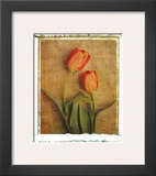 Tulips Poster by Vincenzo Ferrato