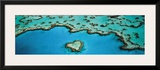 Heart Reef, Great Barrier Reef Prints by Grant Faint