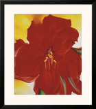 Red Amaryllis, c.1937 Poster by Georgia O'Keeffe