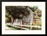 Daylilies Prints by Dan Campanelli