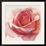 Magnificence III Prints by Yvonne Poelstra-Holzhaus