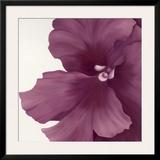 Violet Flower I Art by Yvonne Poelstra-Holzhaus